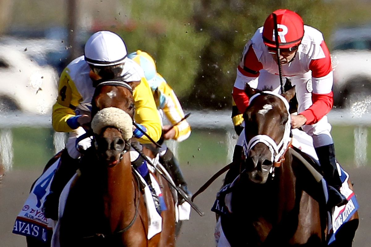Java's War holds off the Ramsey's (insert word here) Kitten for the win at Keeneland in the 2013 Bluegrass Stakes.