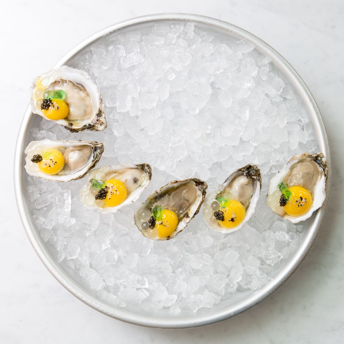 North Square Oyster