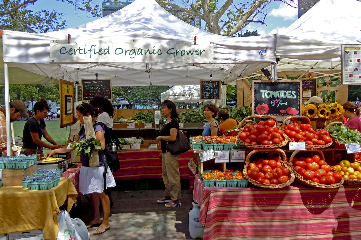 Stock photograph of customers shopping at a farmers market on a sunny day