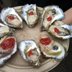 One of the bargains of the day, 4 for $5 Rappahannock Oysters.