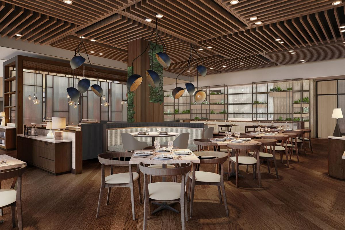 The interior or a new restaurant with white chairs, pale wood tables, a wood paneled ceiling and weird industrial-looking lights