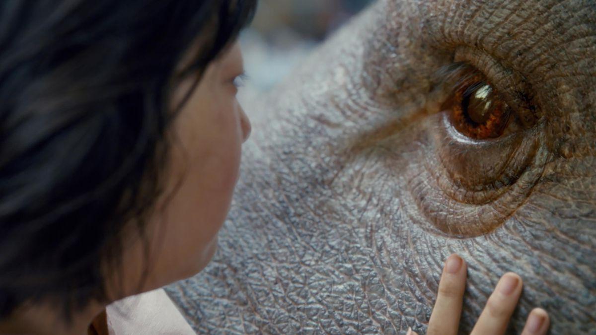A scene from Okja