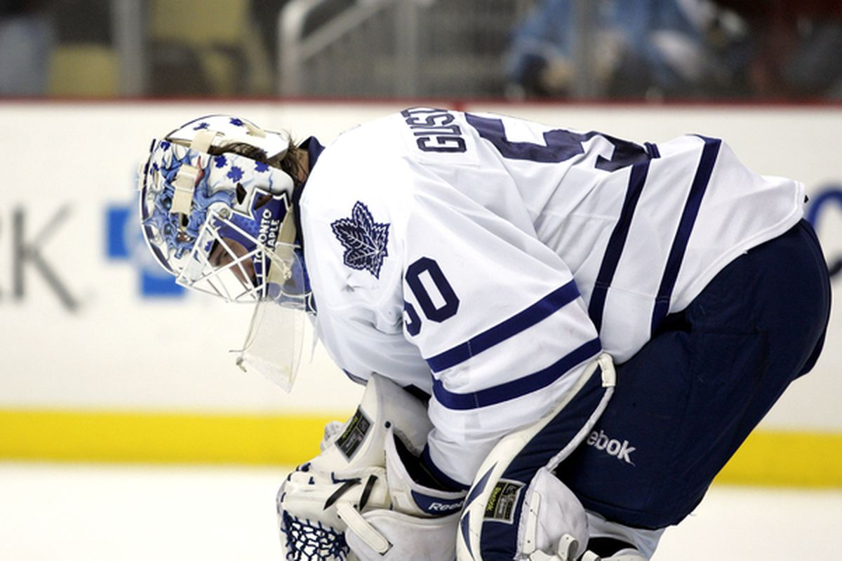 Jonas Gustavsson #50 of the Toronto Marlies (Photo by Justin K. Aller/Getty Images)