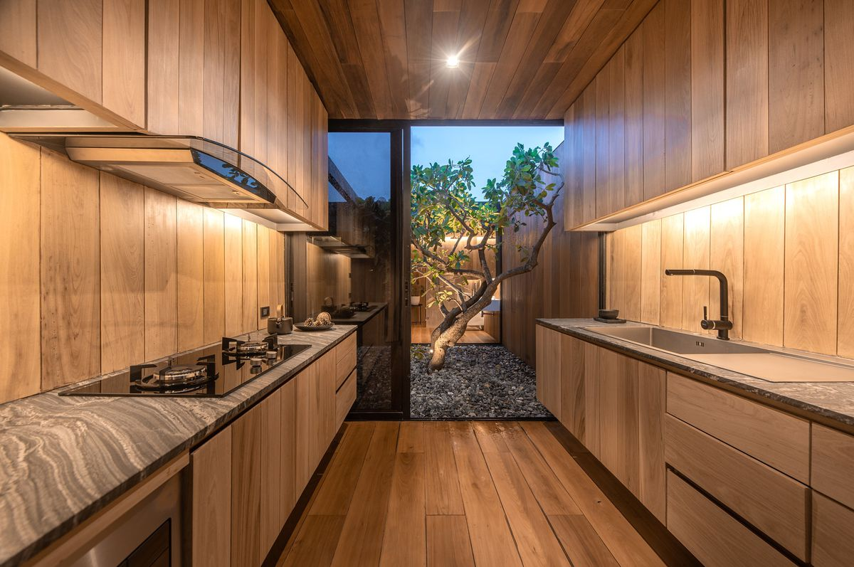A galley kitchen with timber walls and cabinets and a glass wall that opens to a courtyard, where a tree grows.