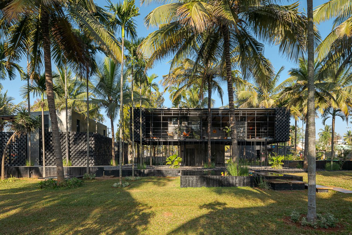 House sitting on stilts surrounded by coconut trees.