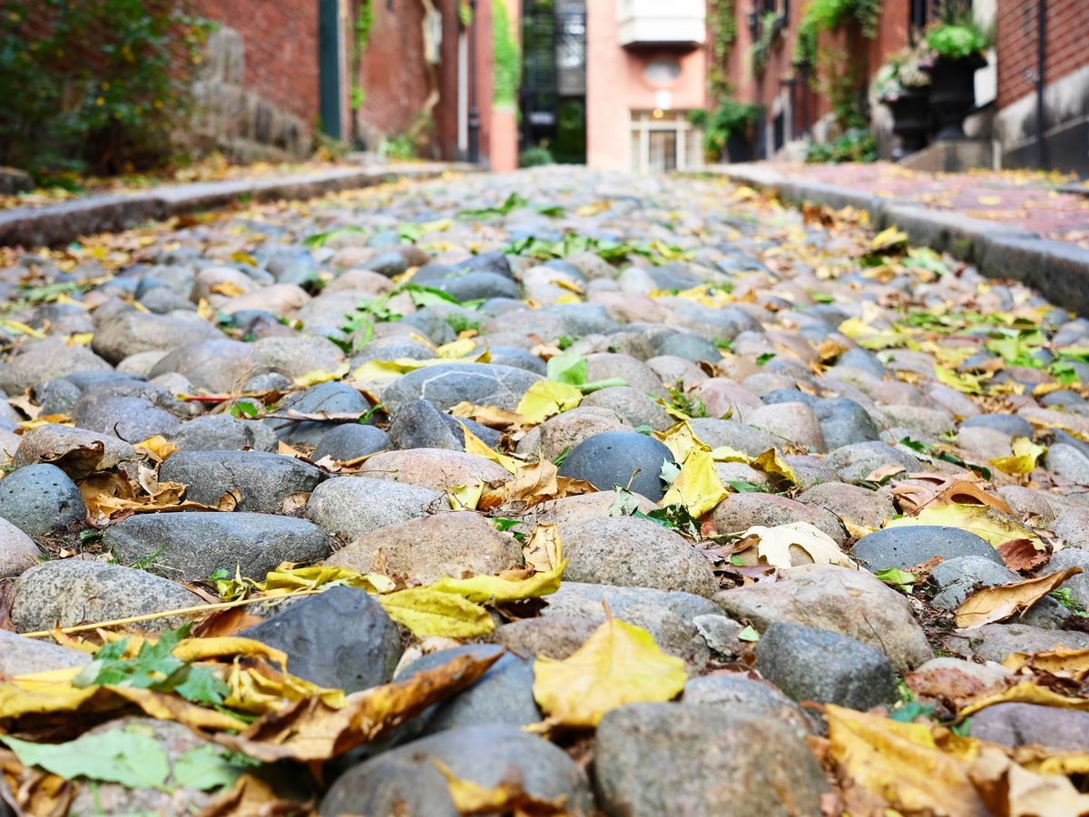 A cobblestone street with leaves on it.