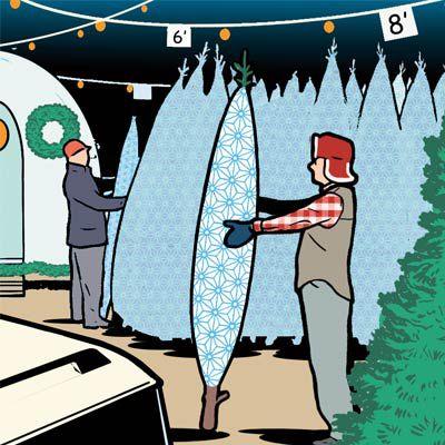 Pessoa segurando uma árvore de Natal viva enrolada em rede.