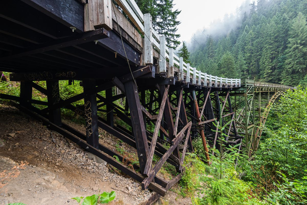 A bridge spans across the Carbon River. There are many tall trees lining the river.