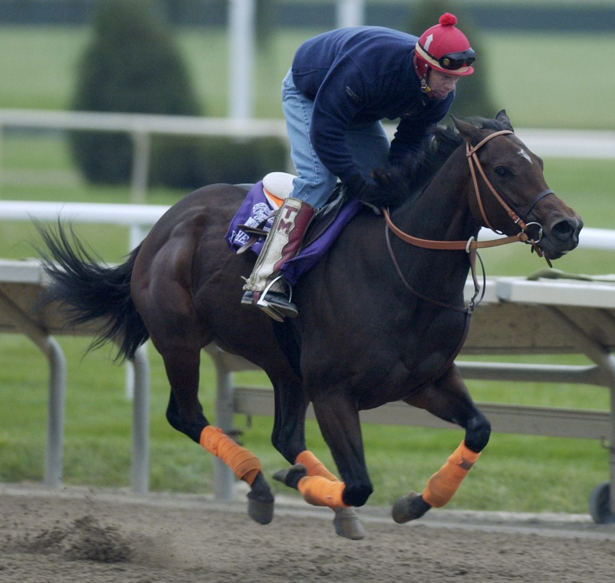 Workouts for the Breeders' Cup at Arlington International Racecourse in 2002.