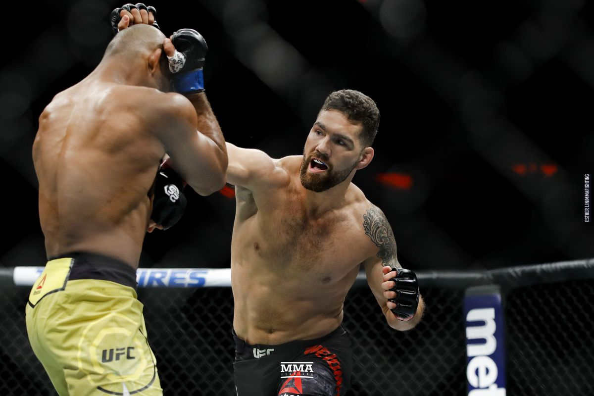 Image result for chris weidman ufc