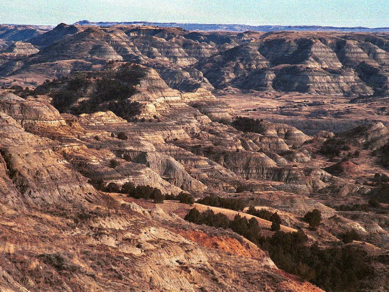 The North Unit of Theodore Roosevelt National Park in McKenzie County, N.D., is unseasonably void of snow Feb. 27, 2000.