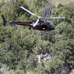 Officials investigate at the scene of a plane crash in Kane County, Wednesday, May 30, 2012.