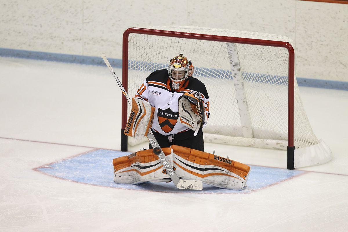 Alysia DaSilva, Princeton Tigers backup goalie