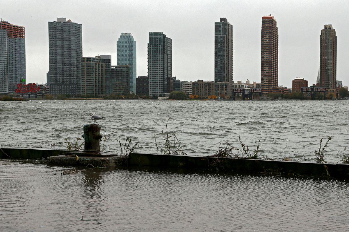 A seagull sits perched in front of the Long Island City skyline along the banks of the overflowing East River ahead of Hurricane Sandy October 29, 2012