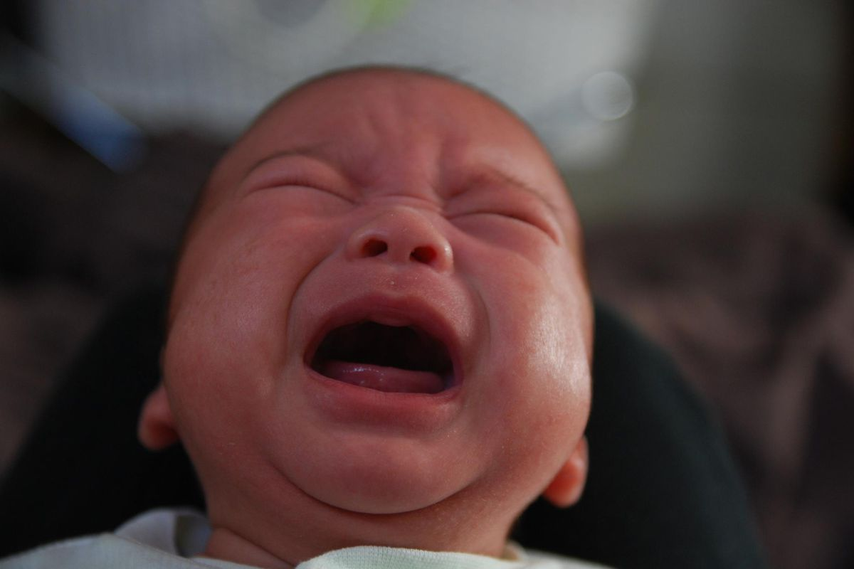 Do babies cry at night to prevent their parents from having more ...