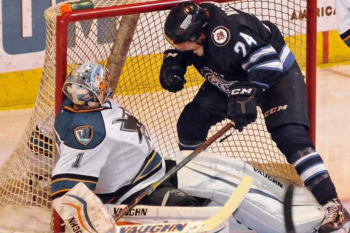 Worcester Sharks goaltender Troy Grosenick gets tied up with St. John's IceCaps forward Scott Kosmachuk during Saturday night's game at the DCU Center (Steve Lanava, Telegram.com).