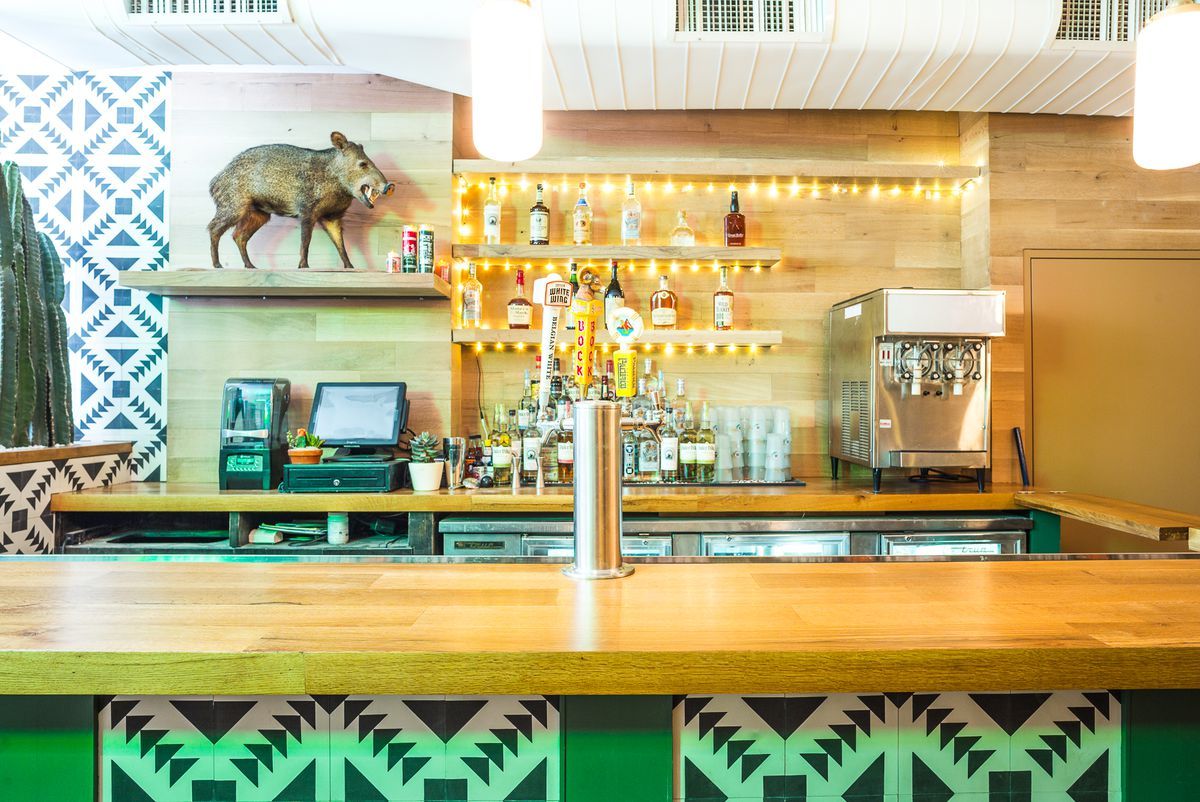 A tiled bar with a baby peccary behind it.