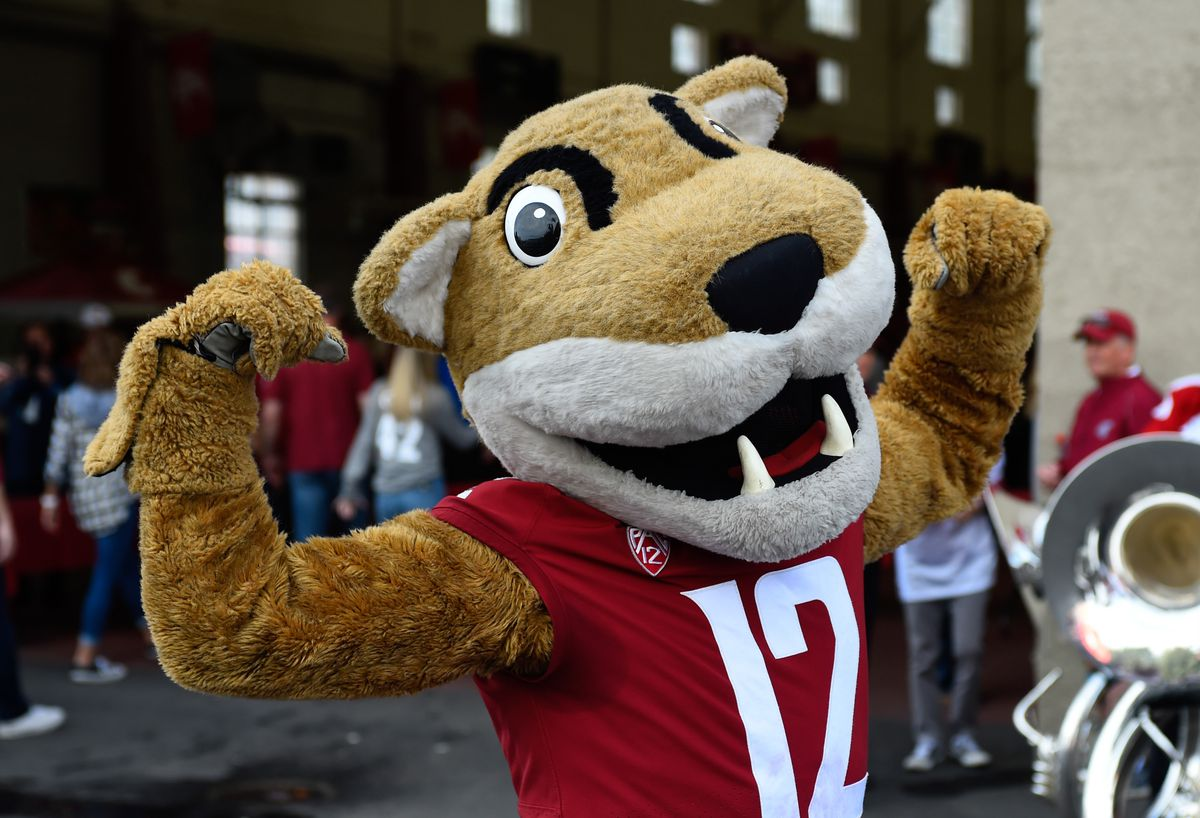 NCAA Football: Utah at Washington State