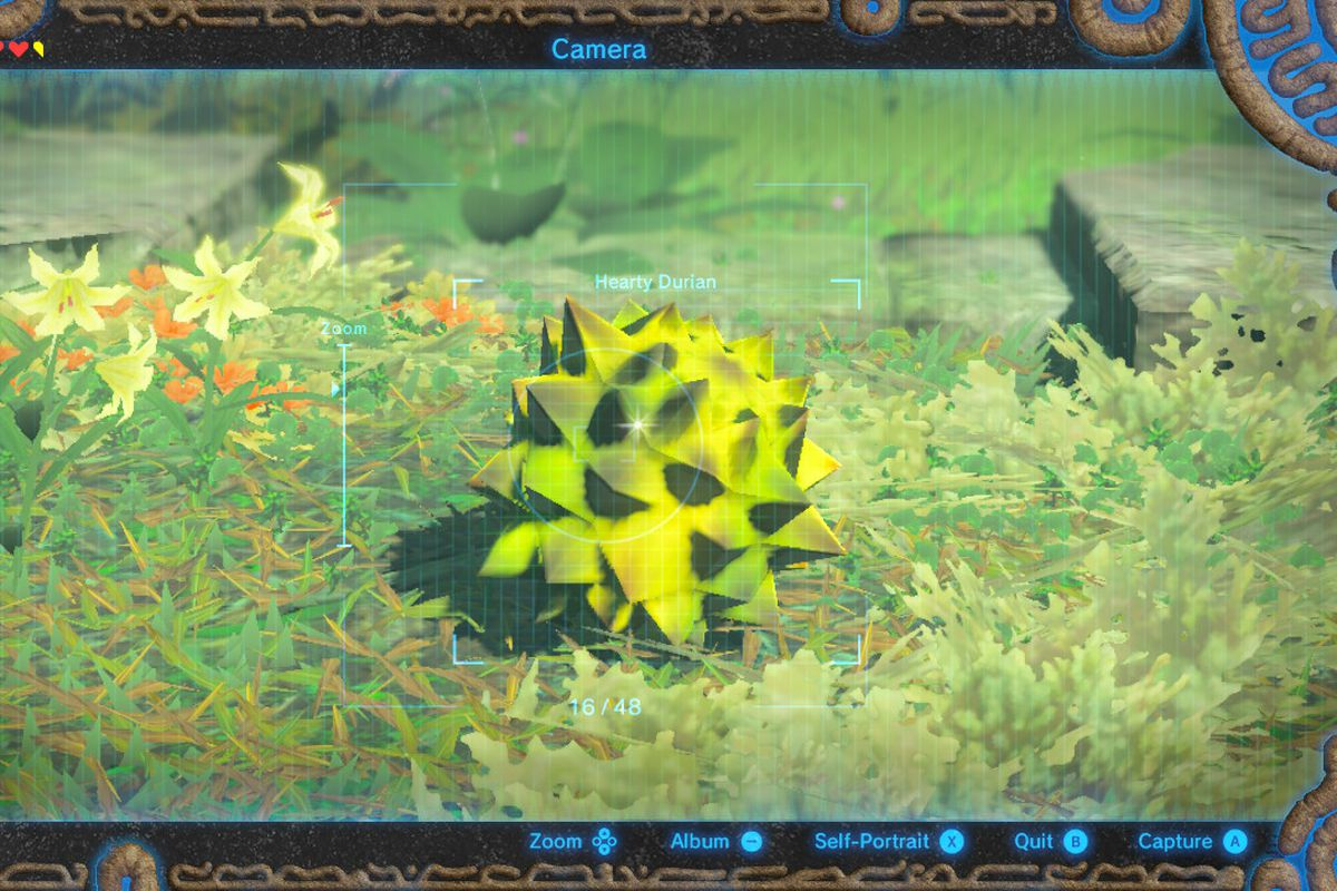 Zelda breath of the wilds easiest way to gain hearts from food the king of fruits and hearts the hearty durian nintendo via polygon forumfinder Images