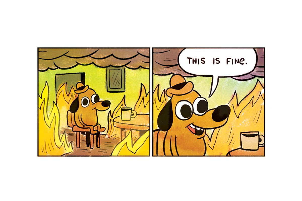 Image result for burning dog this is fine