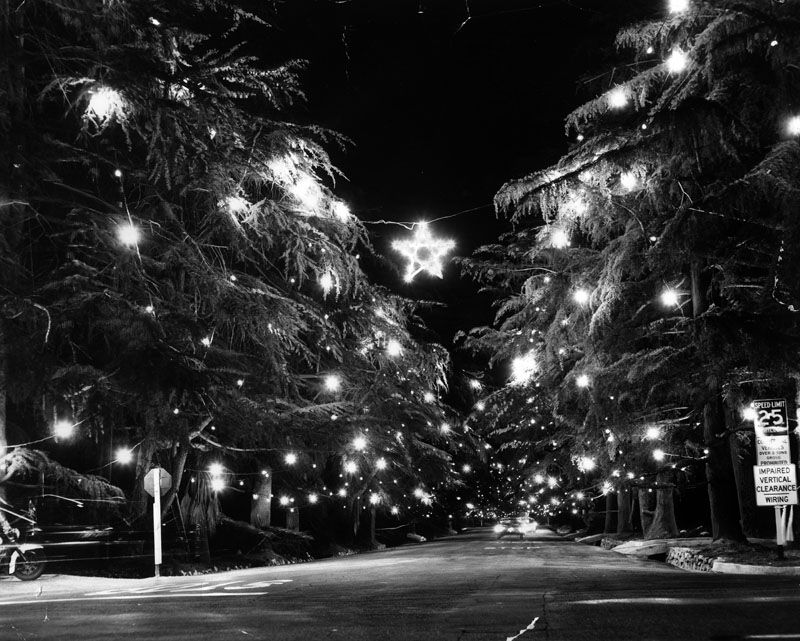 Christmas Tree Lane, 1961