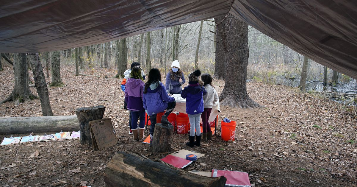 www.vox.com: The case for outdoor schooling