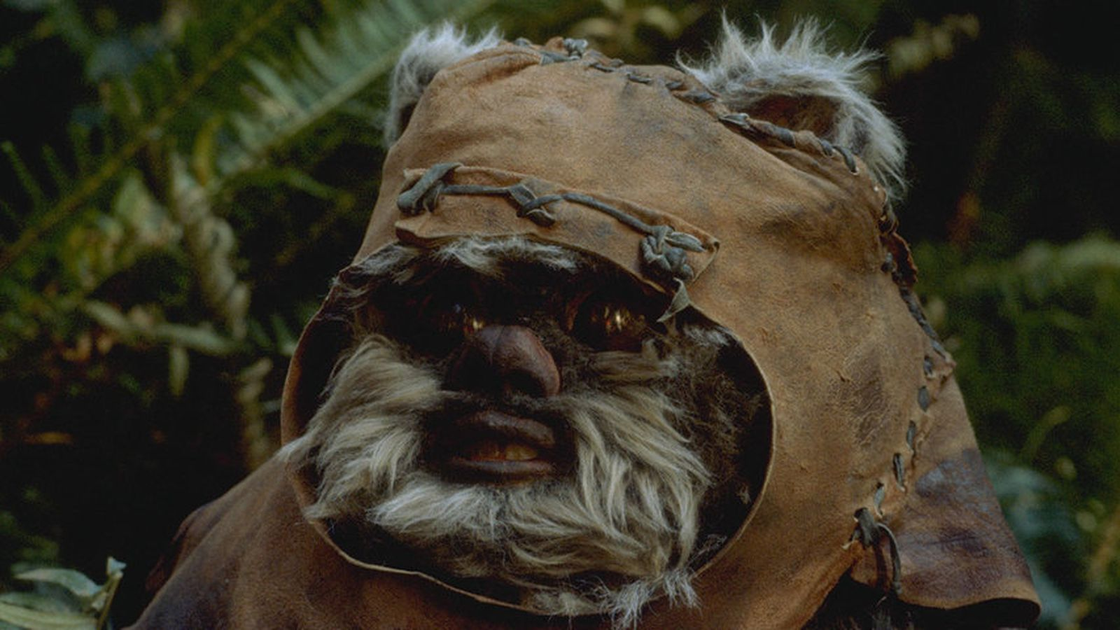 Video And Tv Cast For Samsung >> 'Star Wars: Episode VII' gets a new old cast member: Ewok ...