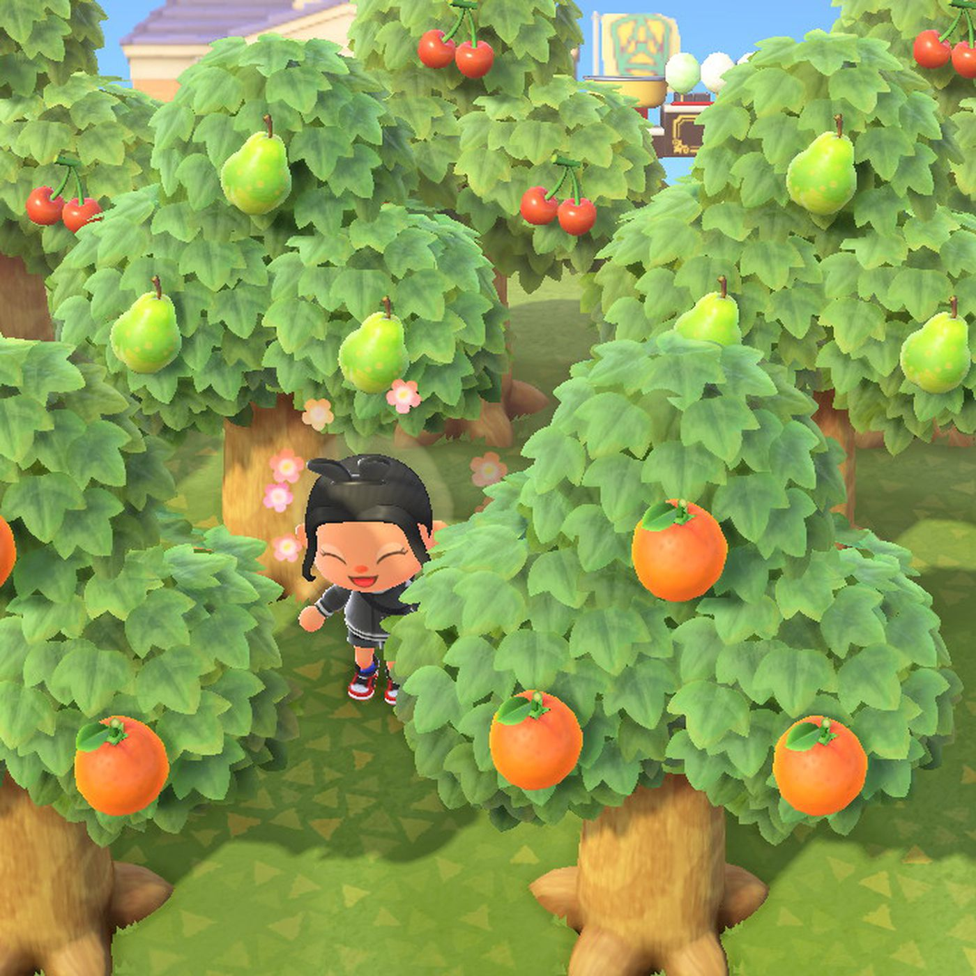 Animal Crossing New Horizons Switch Tree Guide Polygon