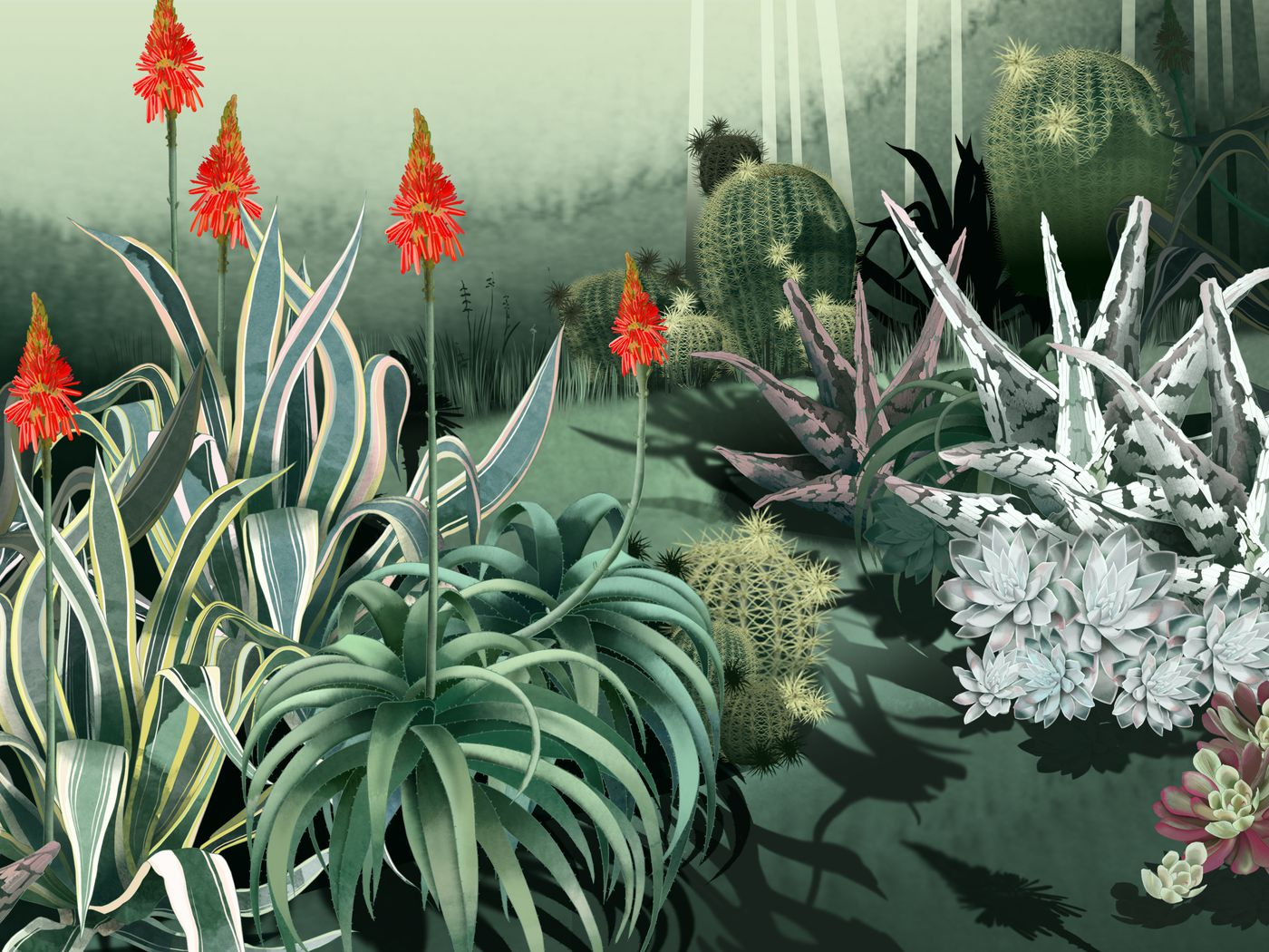 2001cf5ef8b8c Consider the Cactus: How Succulents Took Over the World - The Ringer