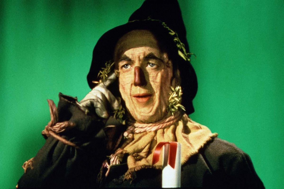 Wizad Of Oz