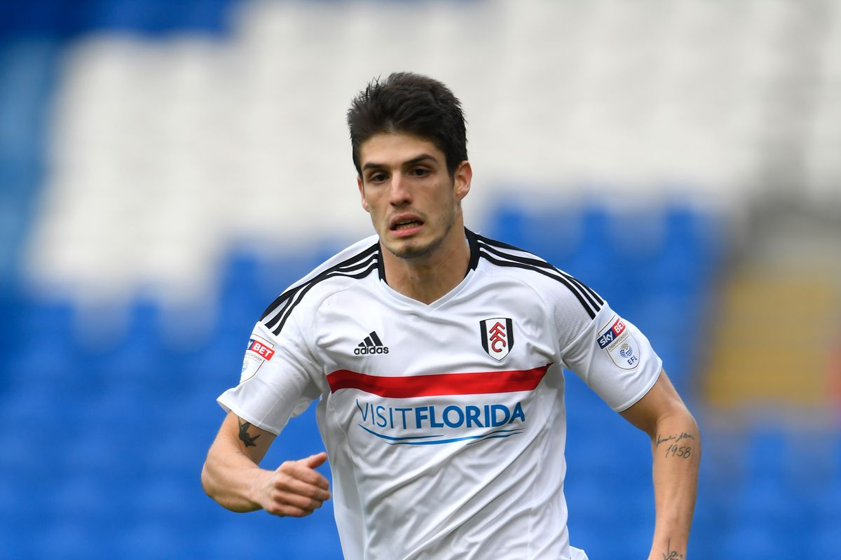 Cardiff City v Fulham - The Emirates FA Cup Third Round