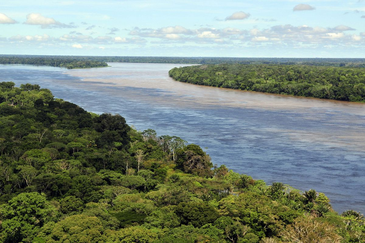 Aerial view of the Amazon Rainforest, near Manaus, the capital of the Brazilian state of Amazonas.