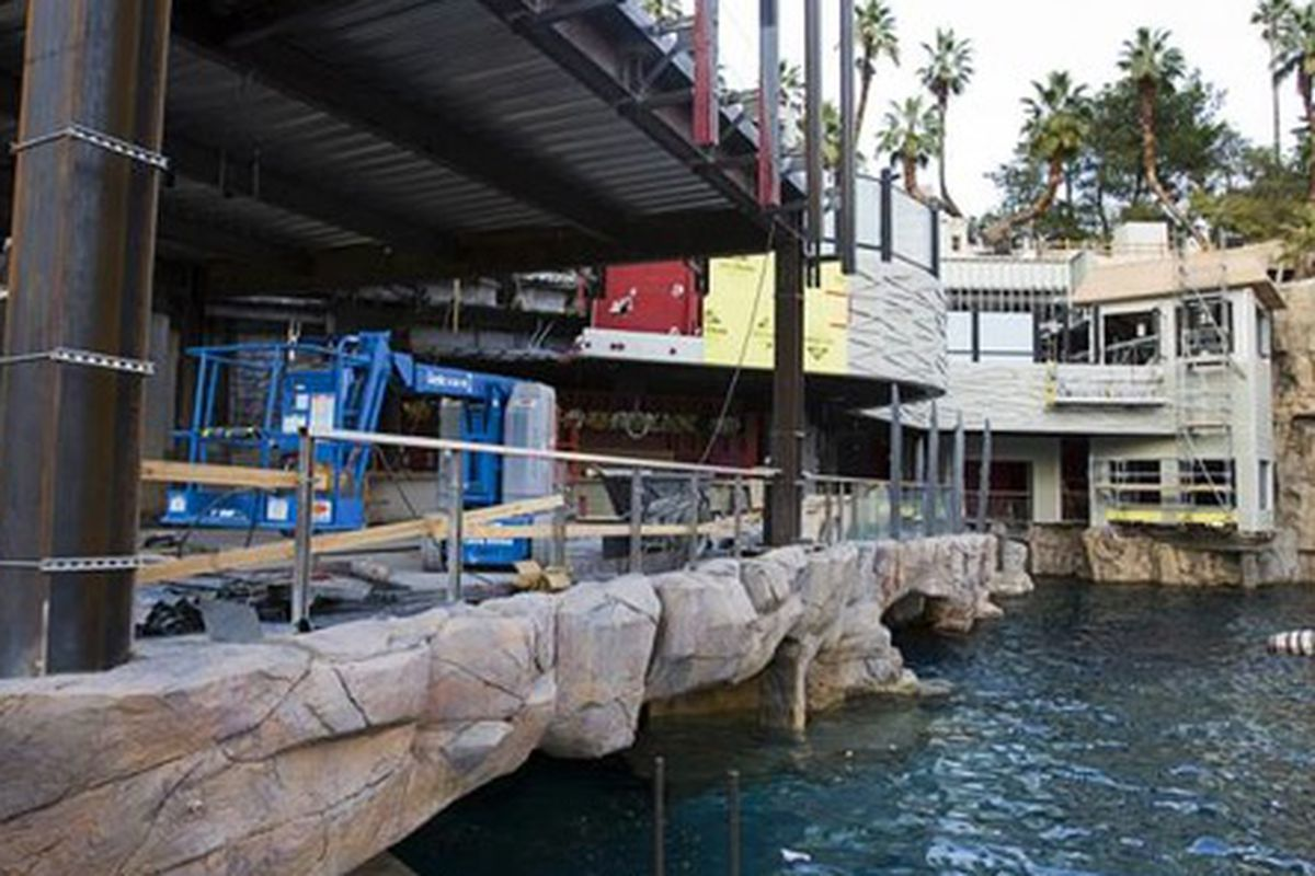 Construction of Señor Frog's.