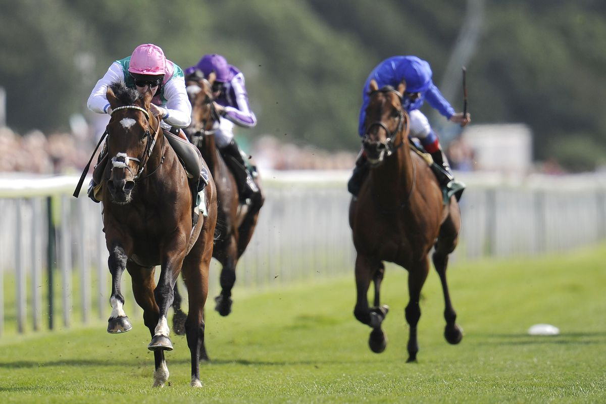 YORK, ENGLAND - AUGUST 22:  Frankel (GB) wins The Juddmonte International Stakes at York racecourse on August 22, 2012 in York, England. (Photo by Alan Crowhurst/Getty Images)