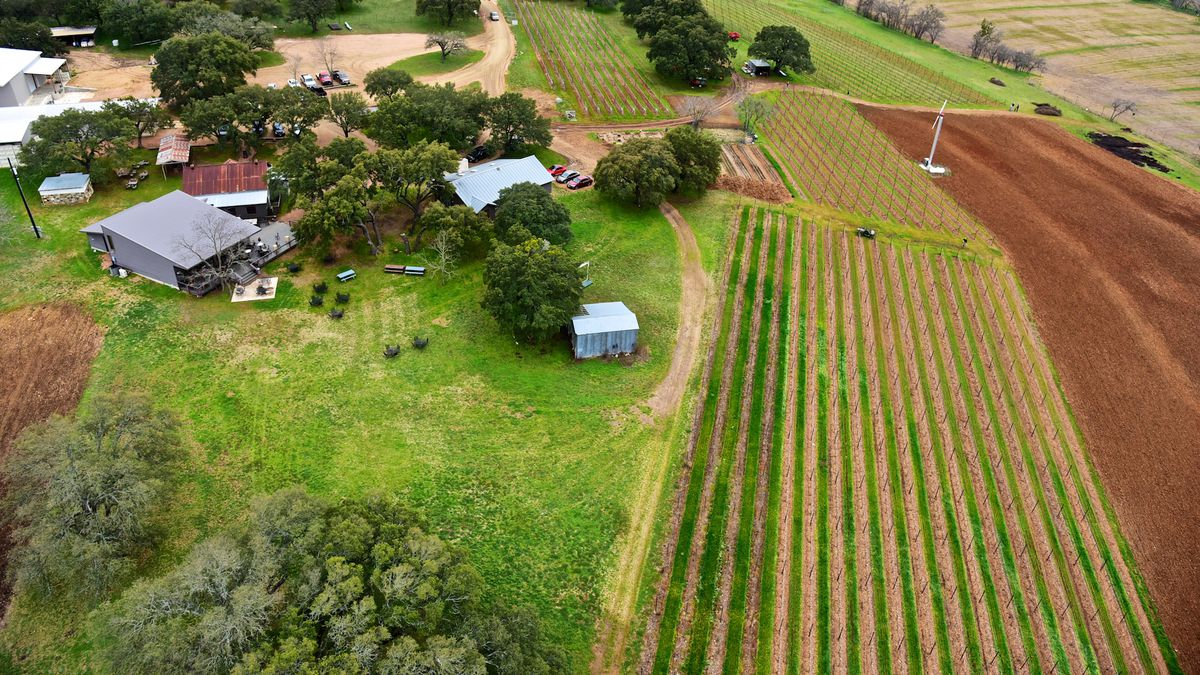 the essential guide to central texas wineries eater austin