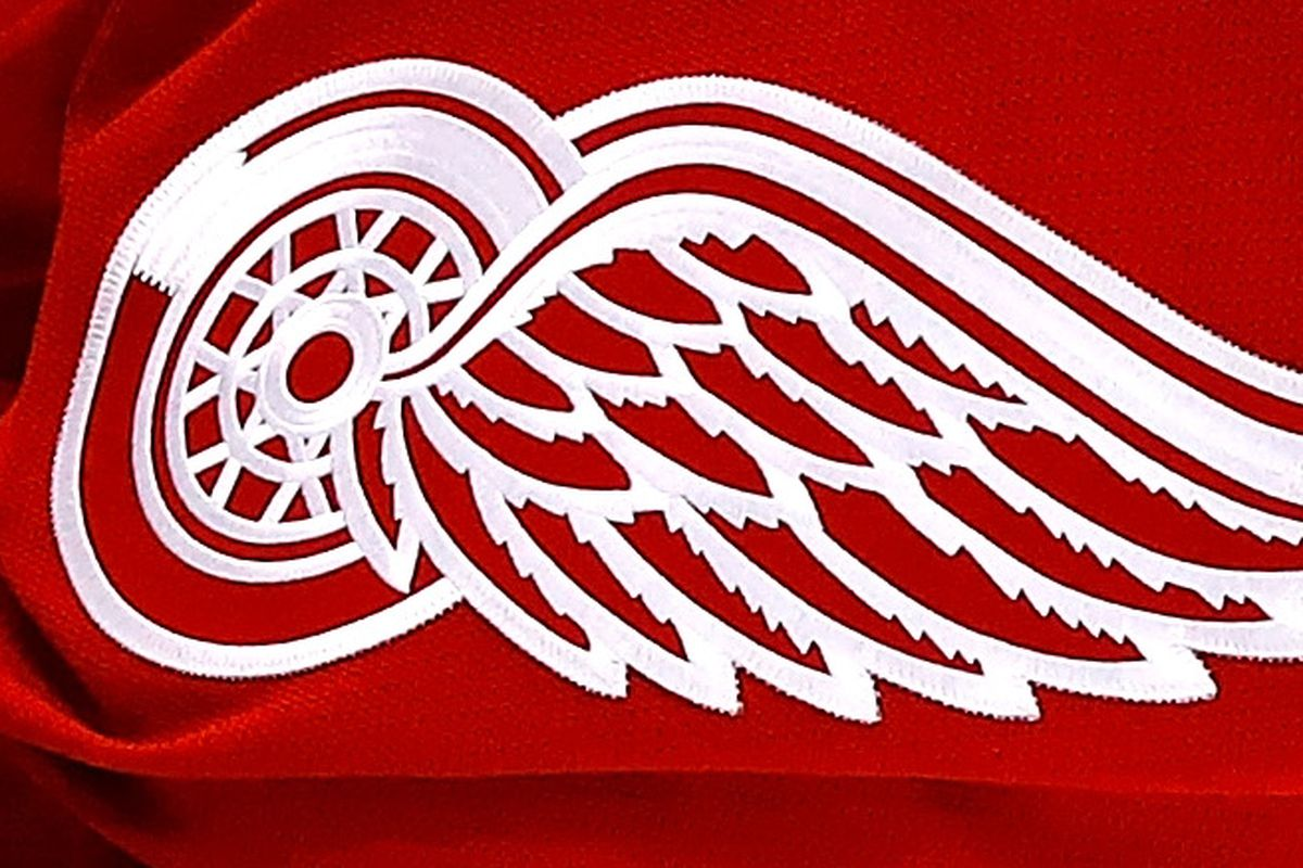 f69e9f10c34 Red Wings New Adidas Jersey Revealed - Winging It In Motown