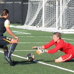 Tyler Afflerbach goes down to make a save with defender Jameson Detweiler nearby