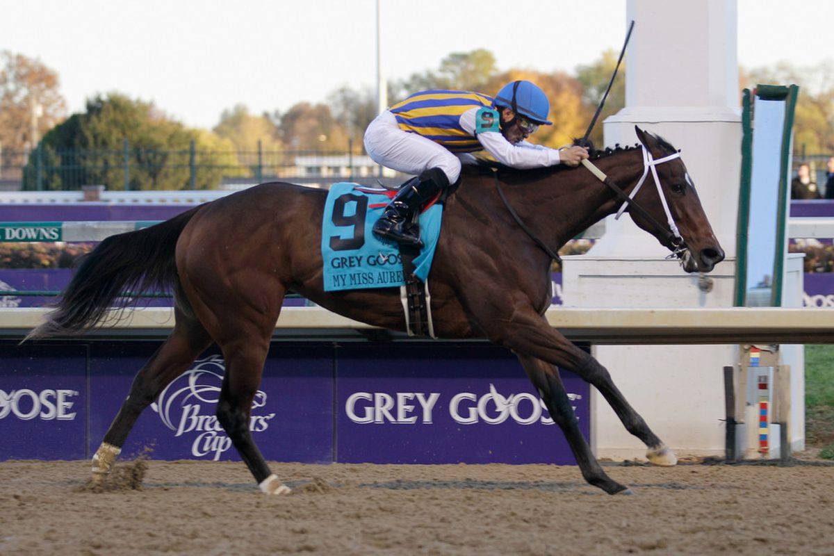 2/5 favorite My Miss Aurelia can only must a 3rd place finish in the G1-LaBrea at Santa Anita.