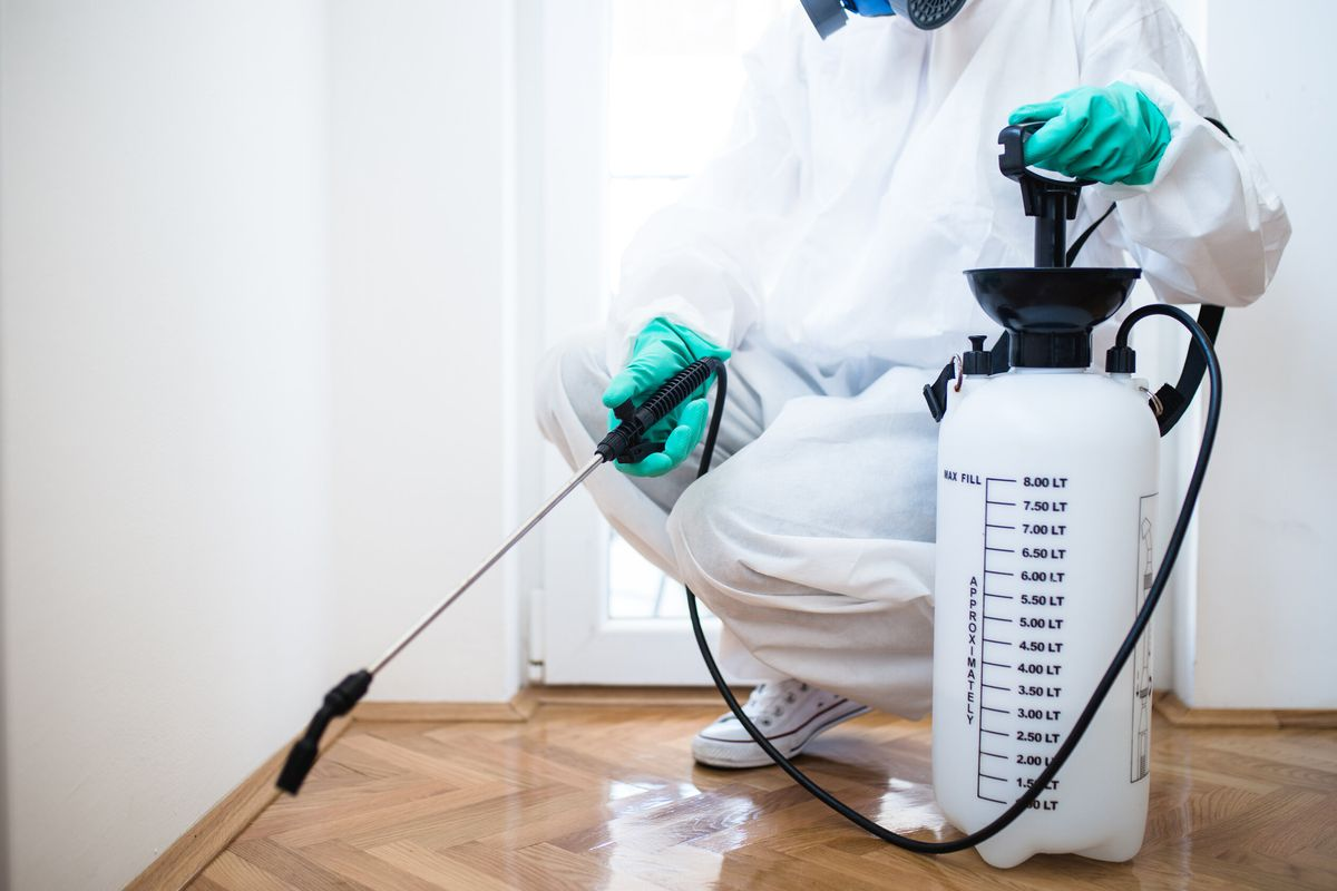 A pest control specialist wearing a white uniform and blue gloves kneels inside a home with a spray wand to apply pest control products.