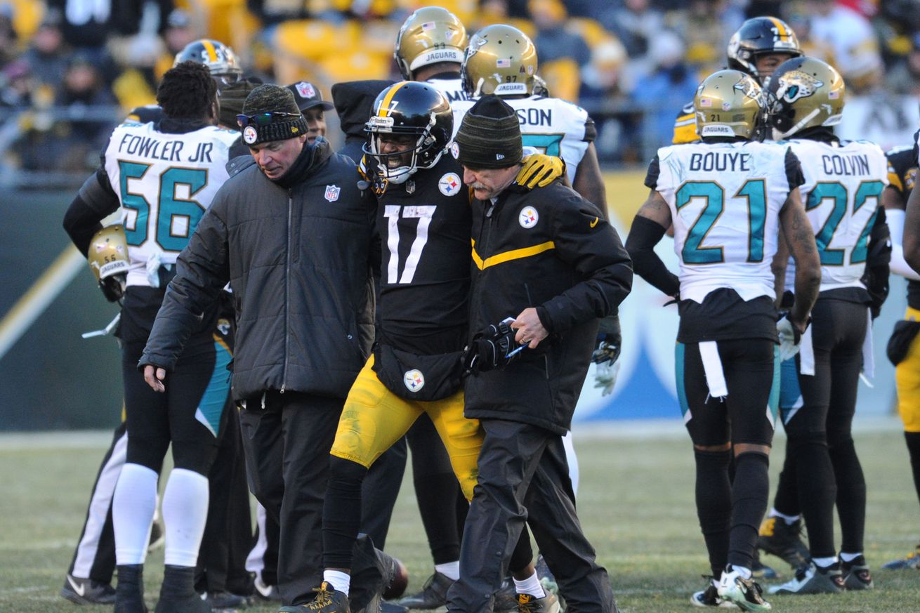 Steelers WR Eli Rogers suffers torn ACL in playoff loss