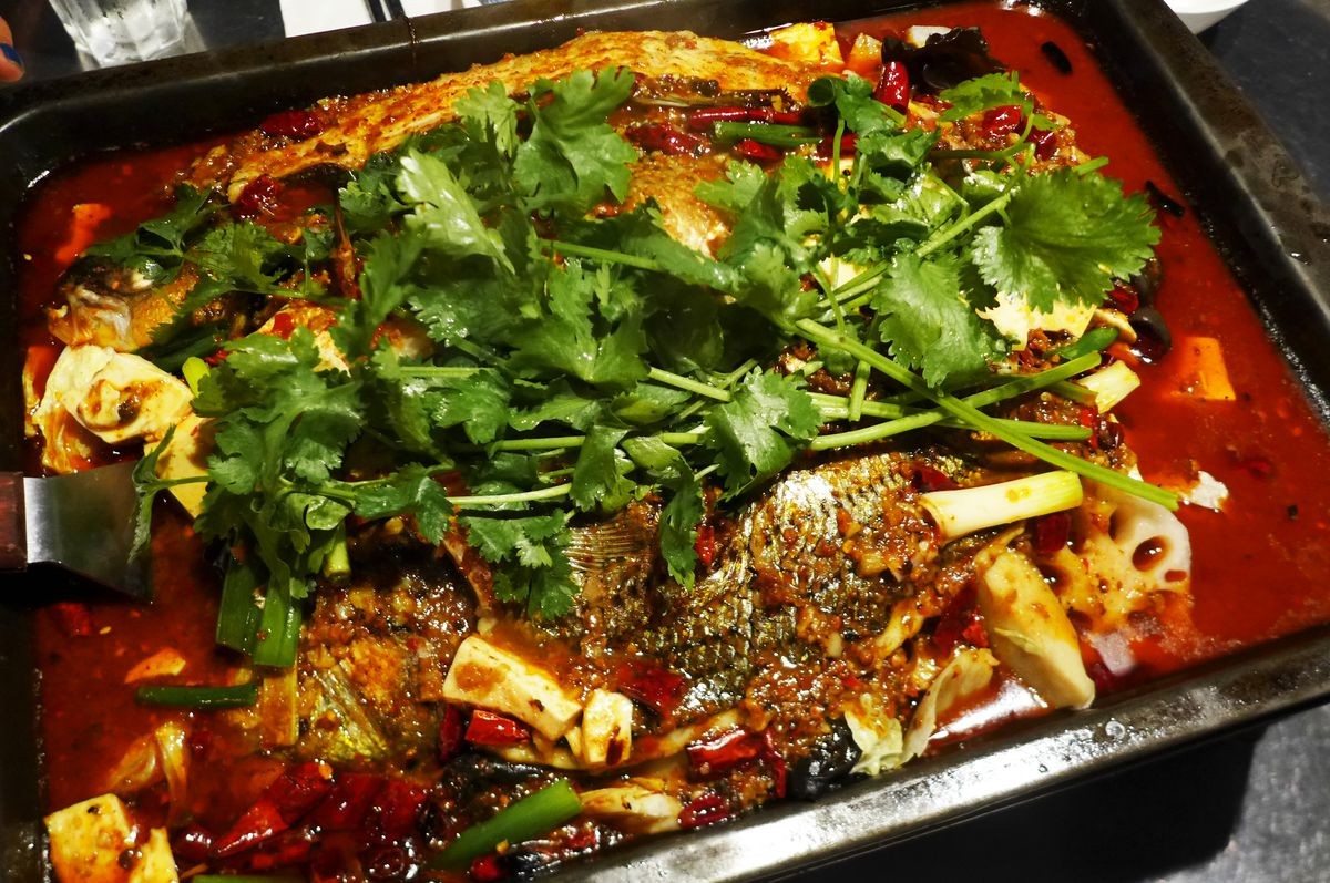 Fish in hot chili sauce topped with cilantro
