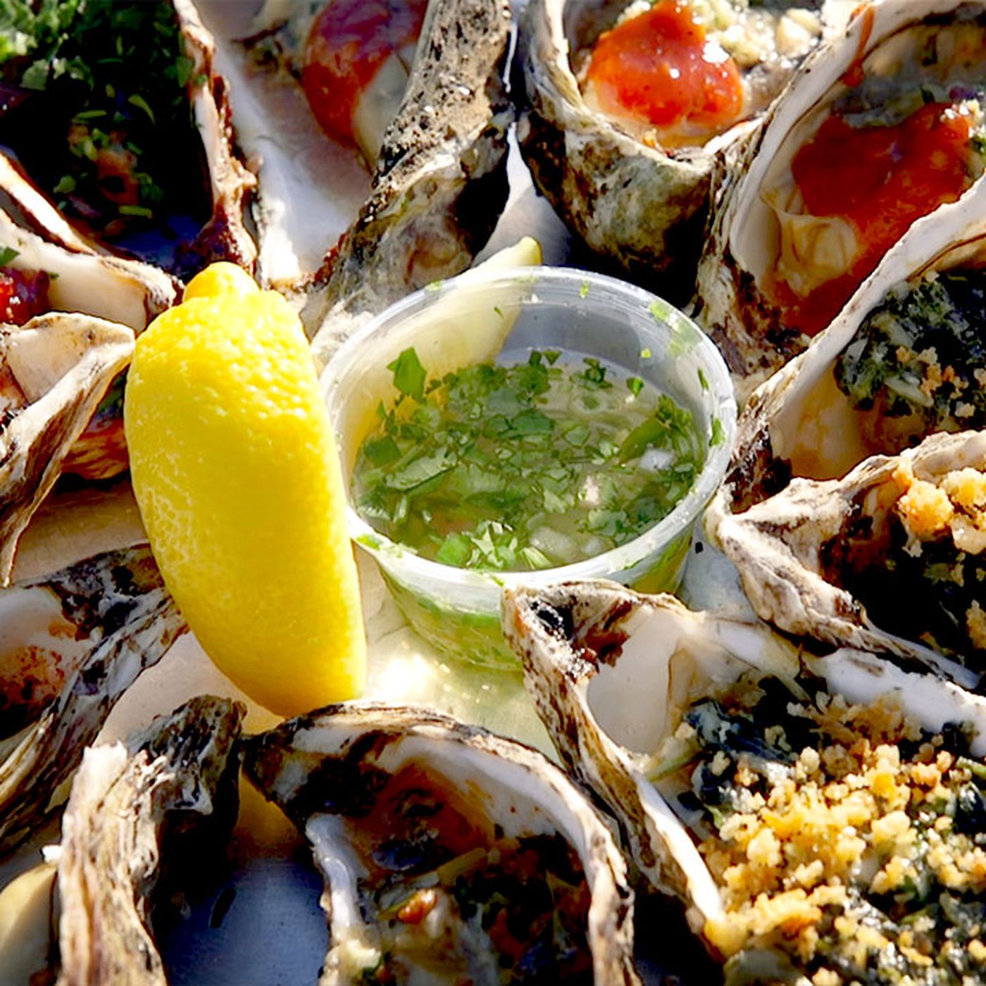 Watch: San Francisco's Best Oysters Live Just Outside the City - Eater