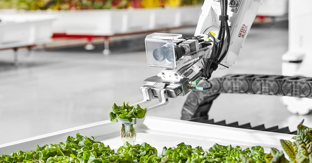 Robot Farming Startup Iron Ox has Started Selling its Produce in California