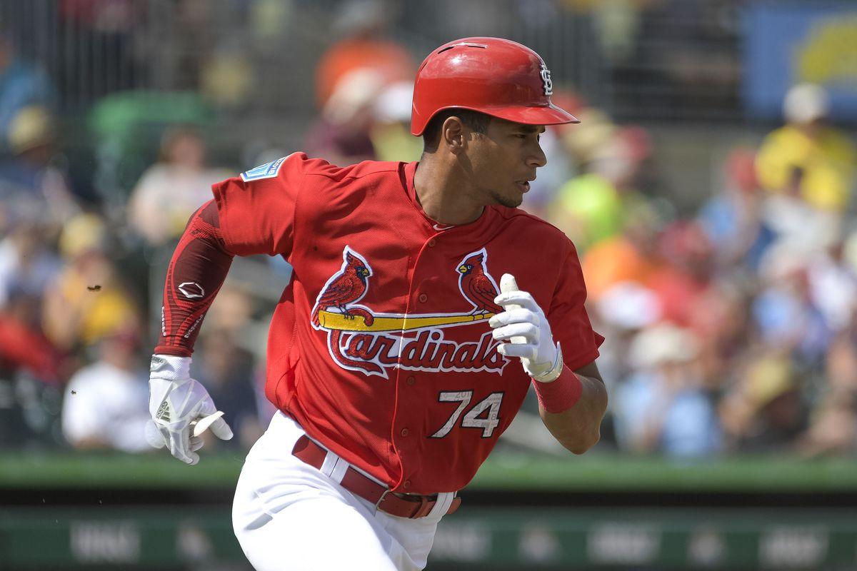 MLB: Spring Training-Minnesota Twins at St. Louis Cardinals