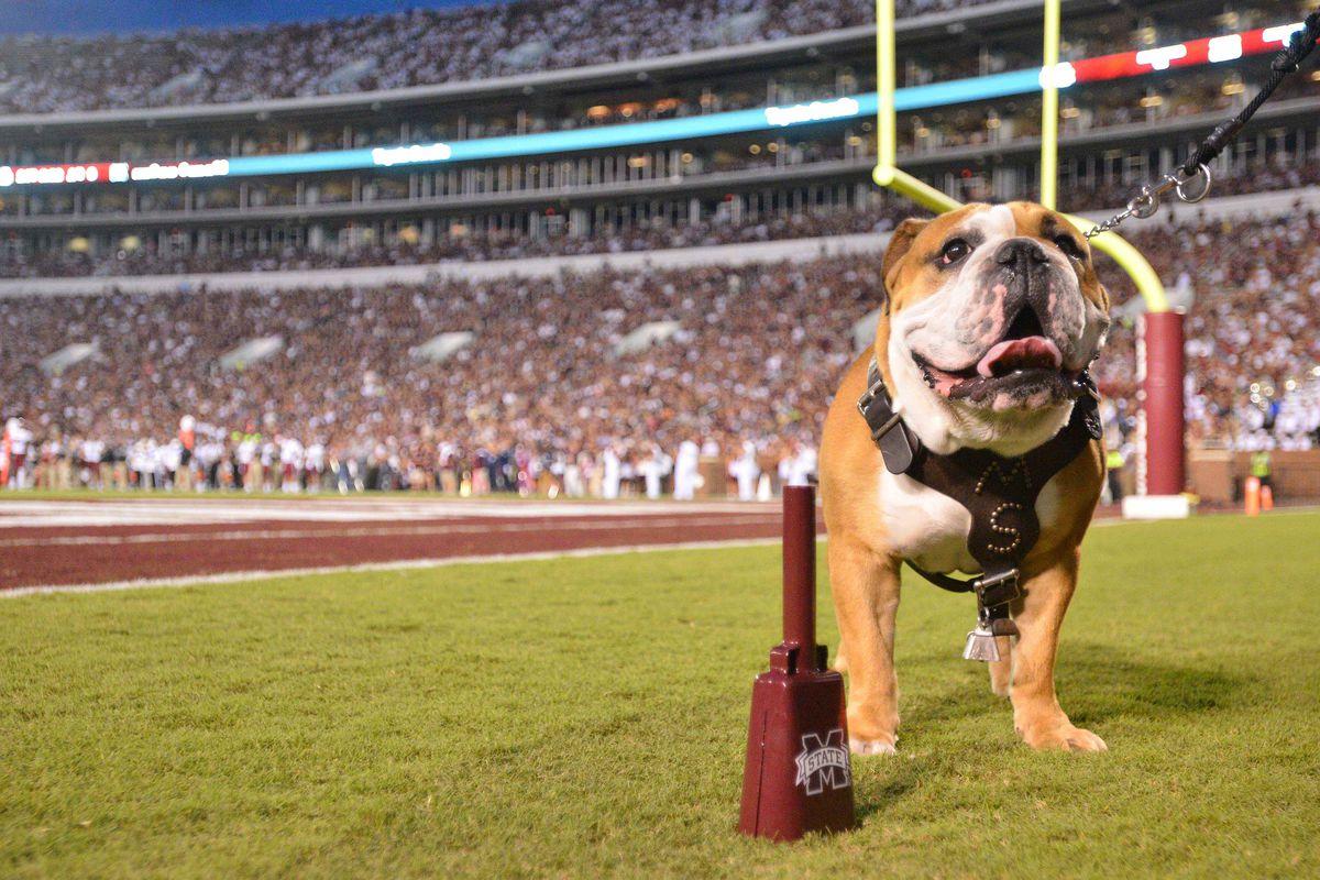 NCAA Football: South Carolina at Mississippi State