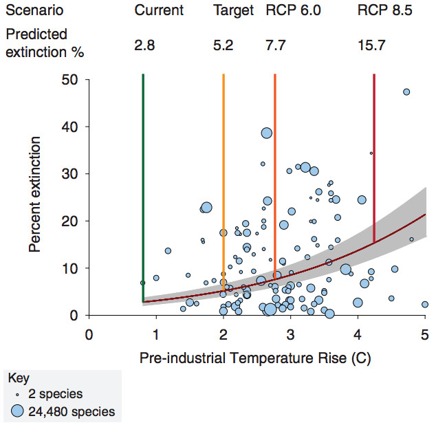 Predicted extinction risks from climate change accelerate with global temperature rise. The gray band indicates 95% CIs. Preindustrial rise was calculated by using standard methods (27). Circles indicate posterior means with area proportional to log10 sample size (bottom left, key). Extinction risks for four scenarios are provided: the current postindustrial temperature rise of 0.8°C (5), the policy target of 2°C, and RCPs 6.0 and 8.5. (Urban, 2015)