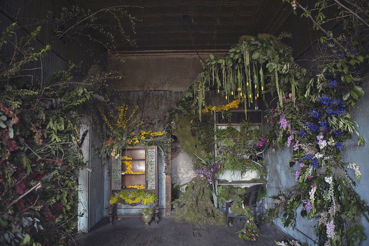 """All photos by Heather Saunders Photography via <a href=""""http://www.huffingtonpost.com/2015/05/14/abandoned-house-flowers-detroit-photos_n_7235442.html"""">The Huffington Post</a>"""