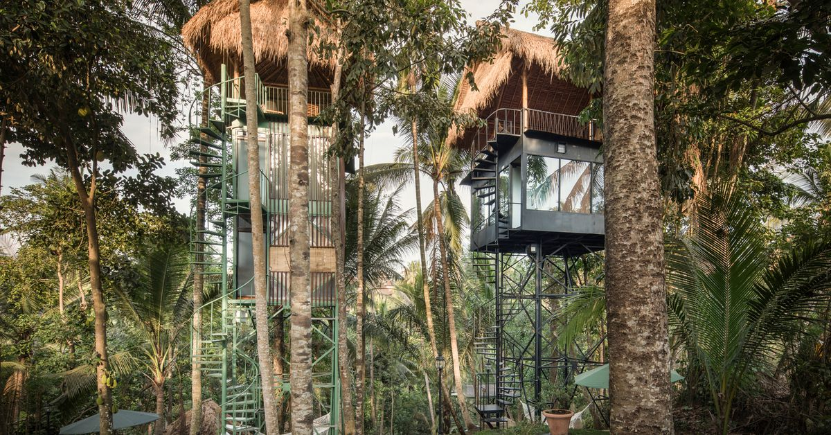 Designer treehouses mix tropical and industrial style
