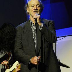 Bill Murray. Photo: Denise Truscello/WireImage