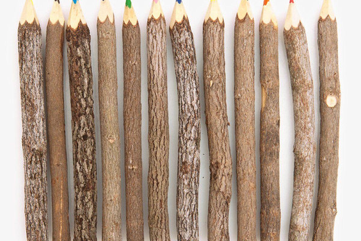 "Reclaimed branch colored pencils, <a href=""http://www.poketo.com/collections/stationery-alpha-desc/products/reclaimed-branch-colored-pencils"">$12</a> at Poketo.com."